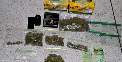 270 grams of marihuana and 8 grams of cocaine were seized along with a significant amount of cash and drug trafficking paraphernalia.