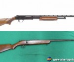 """The firearms are believed to be a"""" Mossberg"""" .410 gauge shotgun and an older single shot, possibly """"Cooey"""" .22 calibre rifle. The .22 calibre rifle has been confirmed as having the barrel cut off."""