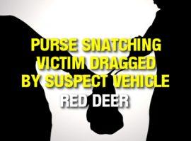 Red Deer Purse Snatching
